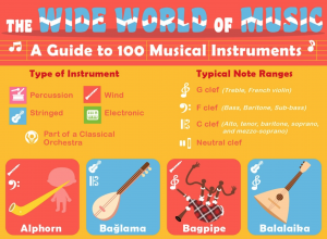 The Wide World of Music: A Guide to 100 Musical Instruments
